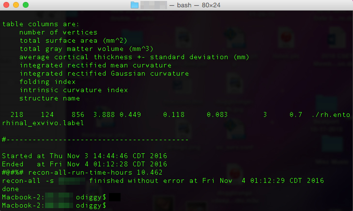 screen-shot-terminal-freesurfer